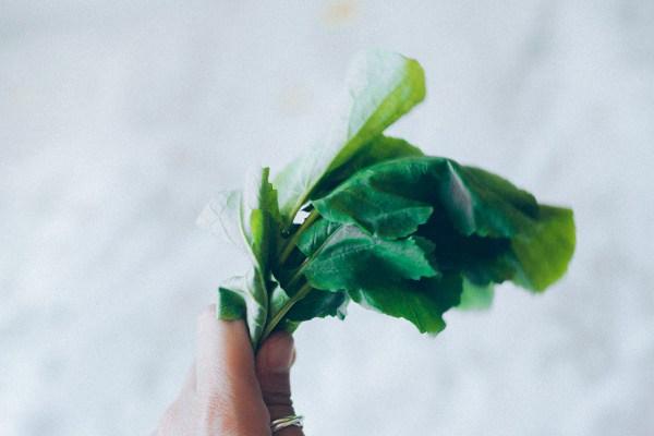 pate-de-hojas-de-rabano-veggieboogie-6