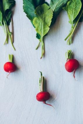 pate-de-hojas-de-rabano-veggieboogie-2
