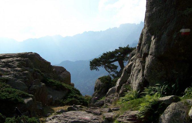 Gr20-pinède-maquis-corse-corsica-vue-paysage-montagne-e1429717606597