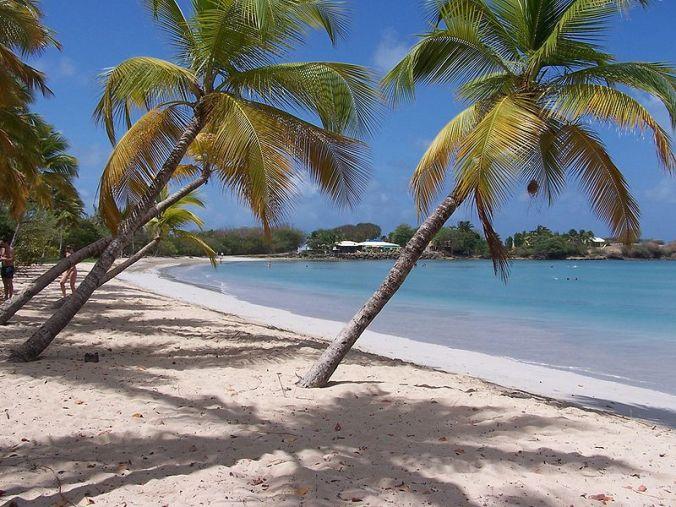 Martinique_Beach_(Salines) Photo Barbacha Nicolas Bouthors