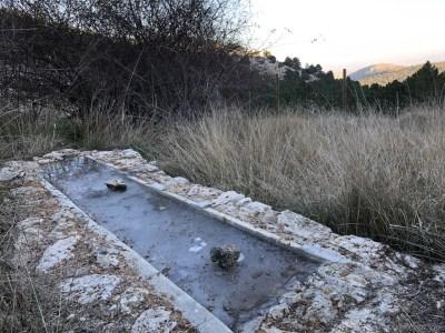 Abrevadero con capa de hielo. Pozos de Murcia