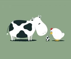 De vacas y gallinas.