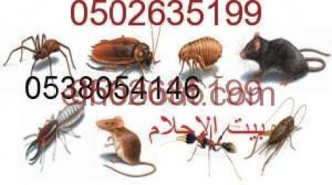 شركة مكافحة جميع الحشرات