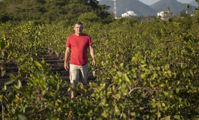 El biólogo Luiz Gonzaga ha plantado más de tres mil árboles Foto: Agência O Globo