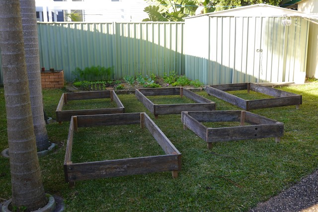 garden beds 20