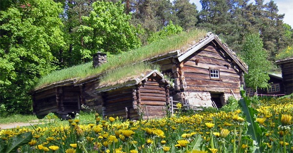 Diseños de casas The Log Cabin