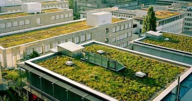 , Por ley los techos en Francia deberán estar cubiertos de plantas o paneles solares