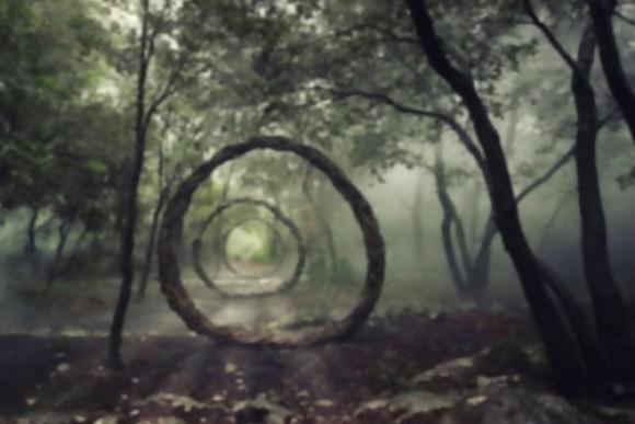 Arte com a natureza 14
