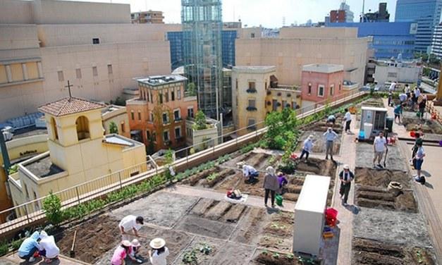 Tokio transforma superficies de estaciones de metro en huertos urbanos