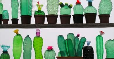 Дизайнер превращает пластиковые бутылки в удивительные скульптуры растений и животных. Facepla.net последние новости экологии