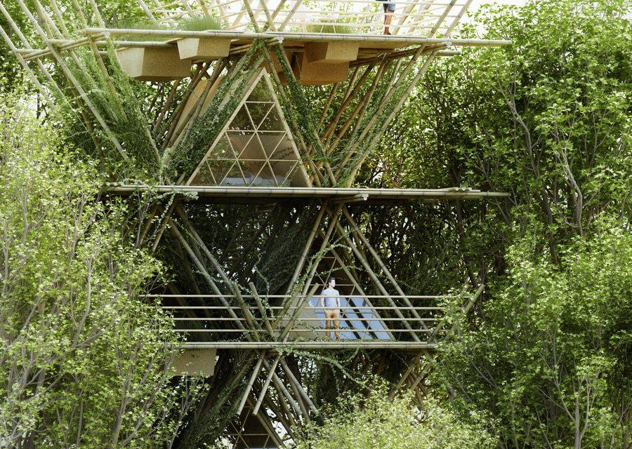 Hotel ecológico usa bambú en toda su estructura