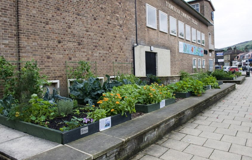 http://www.ryerson.ca/carrotcity/board_pages/_graphics/city/IET/_images/AES%20TODMORDEN%20GARDENS%2052.jpg