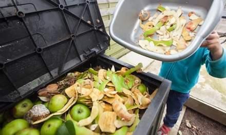 América Latina y el Caribe creará una alianza regional para reducir sus pérdidas y desperdicios de alimentos a la mitad al 2030
