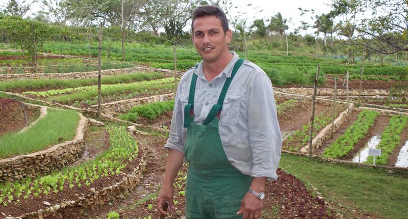 Descubre cómo un agrónomo dejó la teoría y logró una de las tierras más productivas - El Horticultor