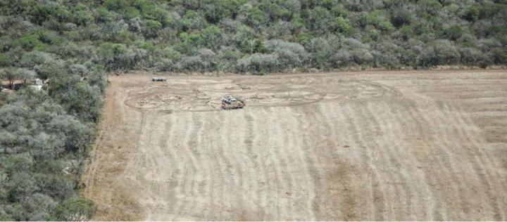 Un productor deberá pagar 1 millones por desmontar 11.000 hectáreas de bosque