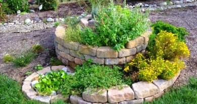 8 beneficios de construir un Espiral de hierbas