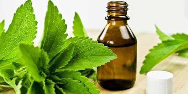 Edulcorantes naturales seguros y beneficiosos para la salud, Edulcorantes naturales seguros y beneficiosos para la salud