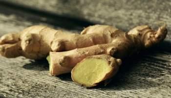Remedios Naturales y hierbas medicinales para el Asma