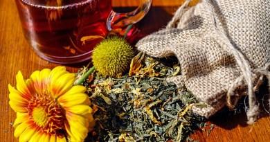 , Listado de Hierbas Medicinales para cada dolencia o afección.