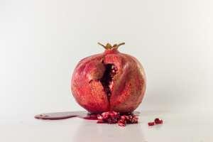 semilla de pomelo
