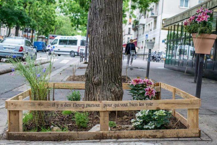 París permite por ley que su gente cultive comida orgánica y sostenible en cualquier lugar de la ciudad