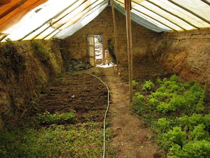 Construye un invernadero subterráneo para cultivar durante todo el año