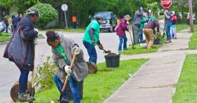 , Dallas planta árboles en caminos de estudiantes para reducir las islas de calor