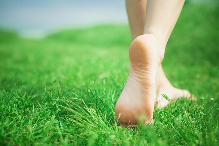 Conexión a tierra en la hierba