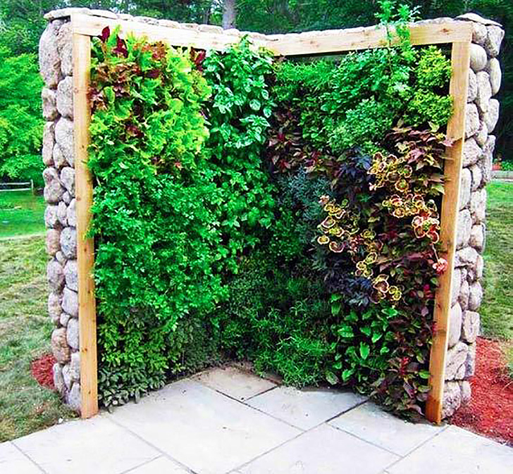 Increíbles jardines verticales de plantas comestibles