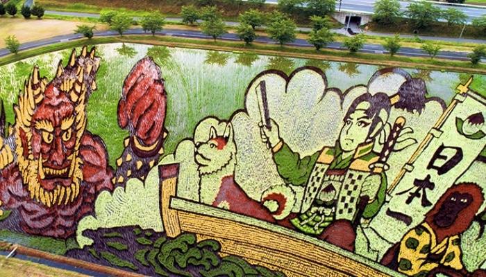 Agricultores japoneses utilizan distintas variedades de arroz para cultivar campos con diseños increíbles