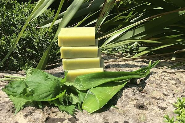 Cómo preparar champú sólido natural de Aloe Vera - Paso a paso