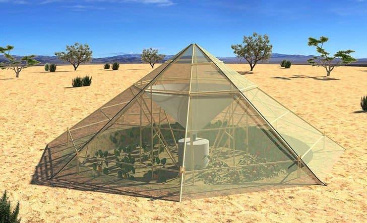 Invernadero colector de agua de rocío permite cultivar alimentos en el desierto