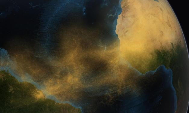 Todo está conectado: Video de la NASA muestra cómo el Sahara fertiliza la Amazonia