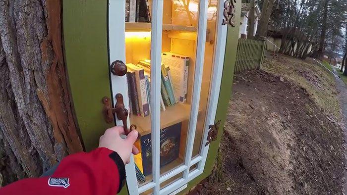 Mujer transforma el árbol podrido en una pequeña biblioteca gratuita en su patio delantero
