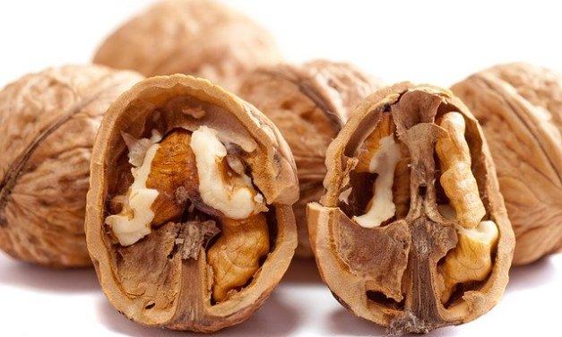 Las nueces son medicina: comer 3 al día reduce los ataques cardíacos, los accidentes cerebrovasculares y mejoran el intestino