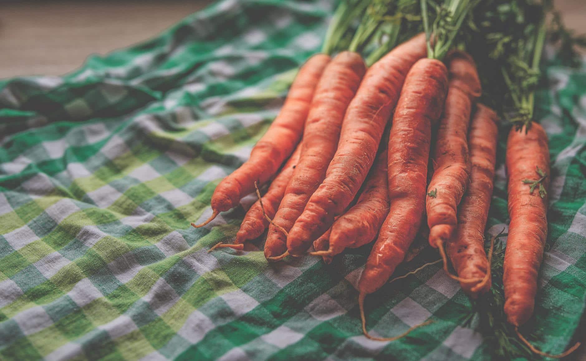 función de los carotenoides en zanahorias y diabetes