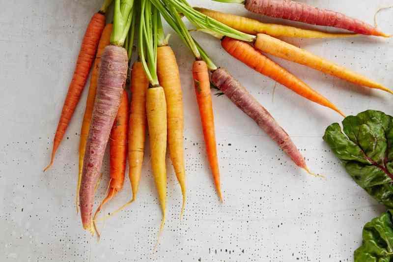 La Zanahoria Y Sus Propiedades Medicinales El Horticultor Se pueden obtener al matar zombis. la zanahoria y sus propiedades