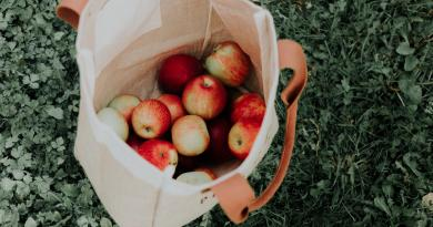 Un terreno de 3 hectáreas será transformado en un jardín frutal de recolección gratuita