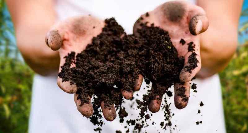 Guía de compostaje rápido, Cómo conseguir compost en 14 días.