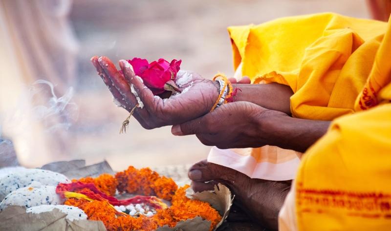 Startup india fabrica cuero vegano a partir de flores de templos desechadas