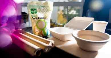 , Esta vajilla descartable hecha de bambú y caña de azúcar se descompone en sólo 60 días