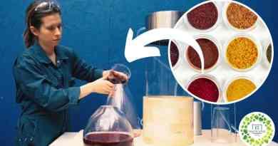 , Estudiante crea Pigmentos Ecológicos hechos con desechos de vegetales