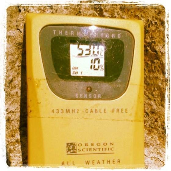 #calor #campo #cosecha #girasol