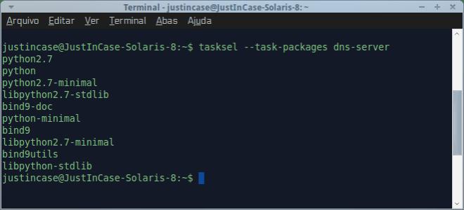 tasksel para instalar servidor dns