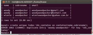 MySQL ERROR 1062 (23000): Duplicate entry