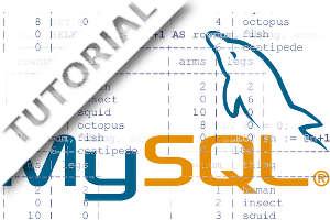 Como listar resultados das tabelas com linhas numeradas no MySQL