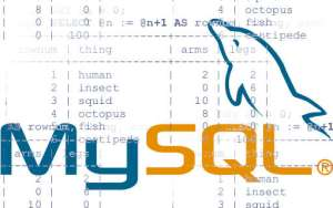 mysql numbered lines tables