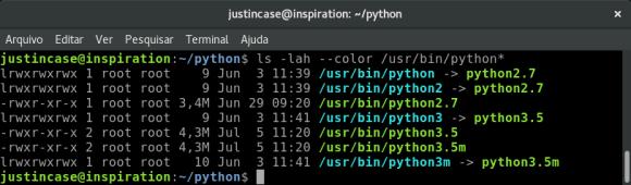 python links default interpreter