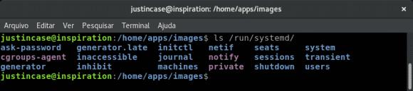 screenshot ls systemd run