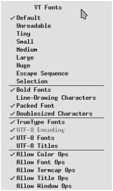 xterm right menu - virtual terminal fonts menu